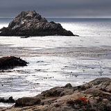 Point Lobos SNR Image