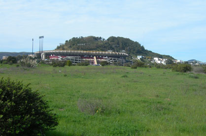 Candlestick Point SRA stadium