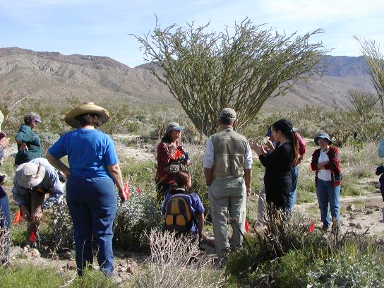 Site stewards training in the field.