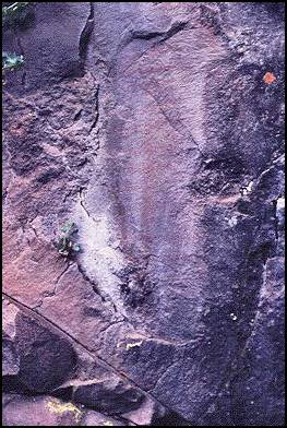 Close up of pictograph at CA-LAK-30, showing 13 parallel bars. (Photo: unknown)