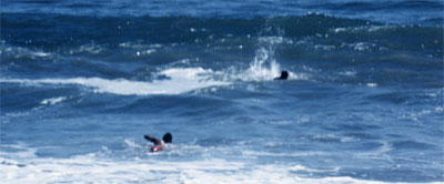 Lifeguard at Twin Lakes SB swims out for a victim struggling in a rip current.