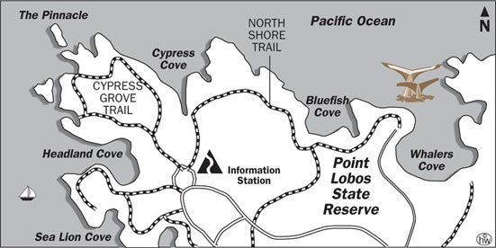 Cypress Grove Trail, North Shore Trail Map