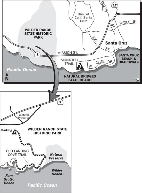 Old Landing Cove Trail, Ohlone Bluff Trail Map
