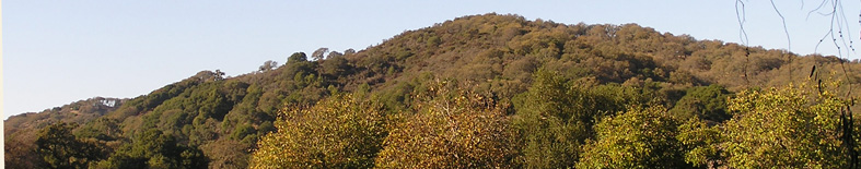Mountain and oak woodlands at Olompali SHP