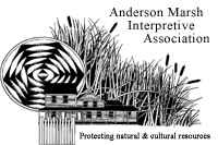 AM Interpretive logo