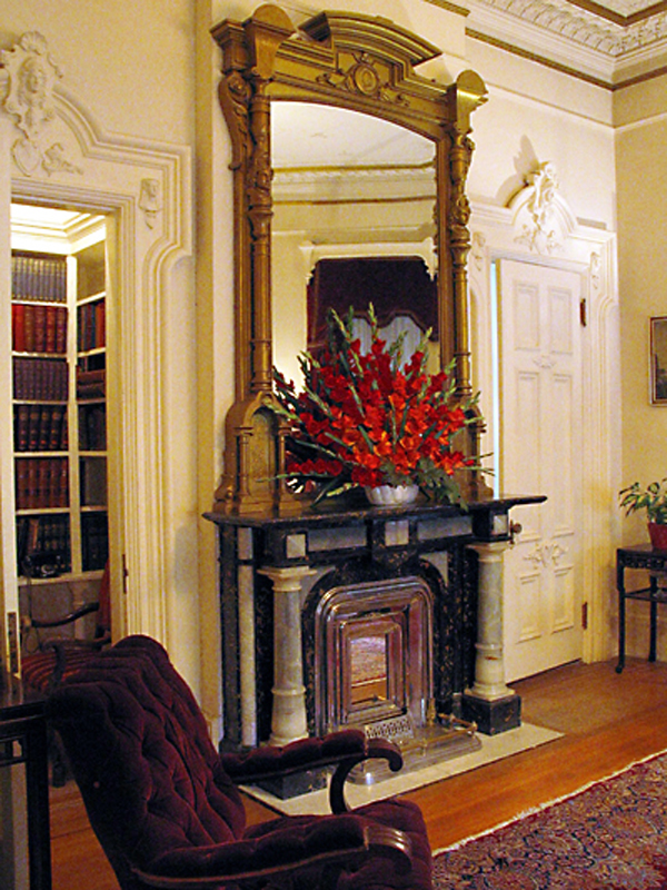 Fireplace and mirror in library.
