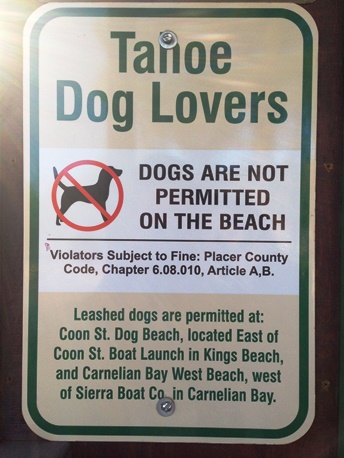 tahoe dog lovers