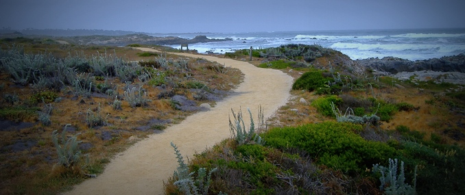 Asilomar Coast Trail