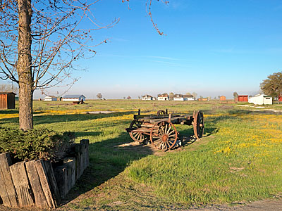 The landscape of Allensworth