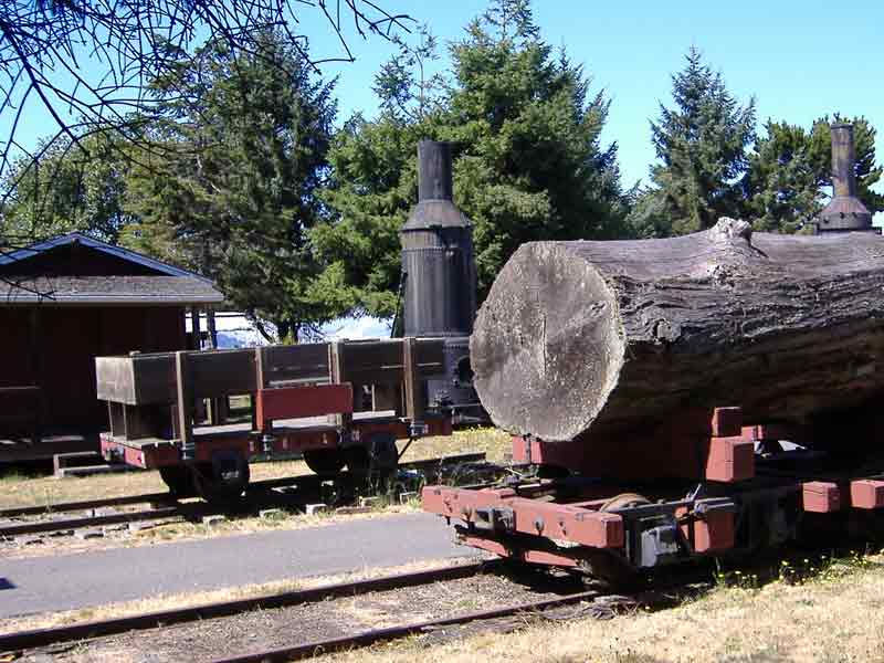 Fort Humboldt SHP Logging Artifacts